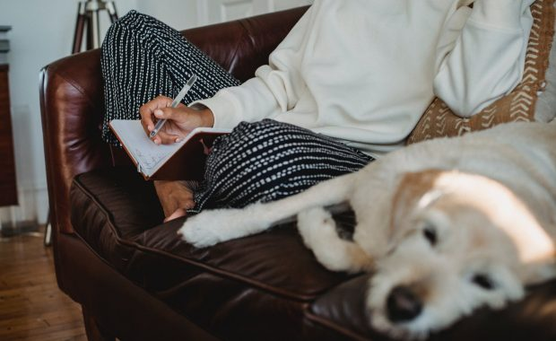 lazy dog resting on sofa near anonymous female owner taking notes in planner